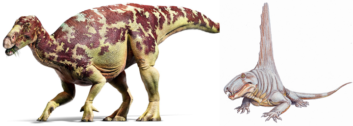 Dinozaury - nie-dinozaury