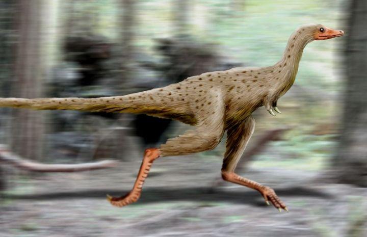 linhenykus dinozaur bez rąk